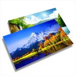 postcards 4x6
