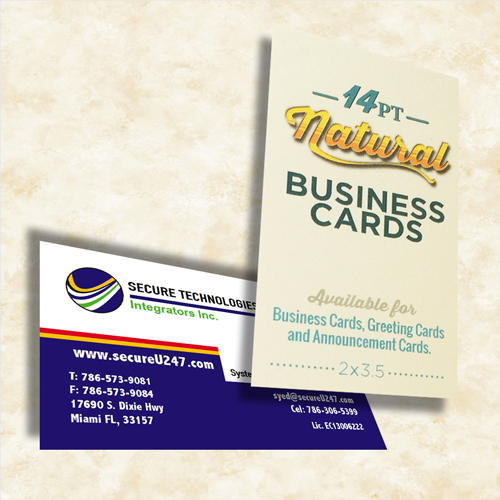 Standard Business Cards ly at 3¢ Each Ship in 24Hours