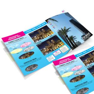 Brochure 11 x 17