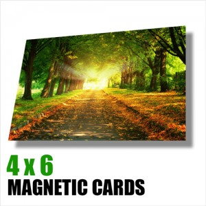 Magnetic Cards 4 x 6