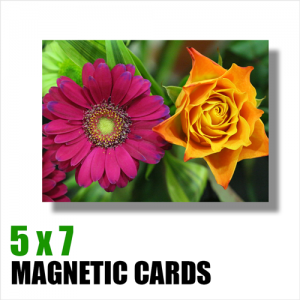 Magnetic Cards 5 x 7